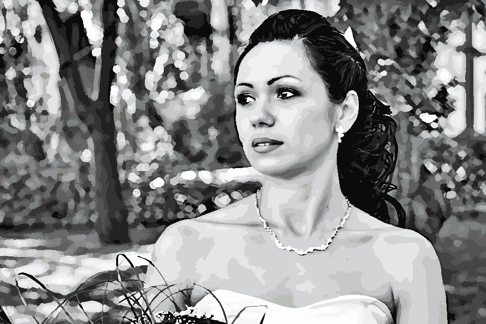 Картина по номерам по фото в черно-белом стиле